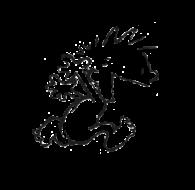 race50016-logo.bzD-ih
